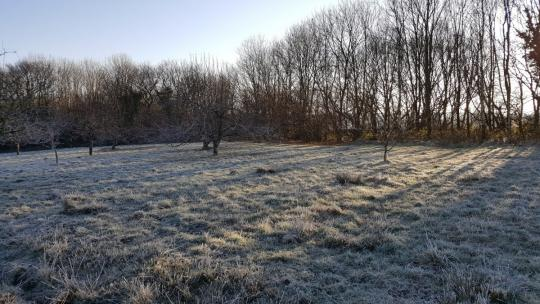 Frosty Morning South Molton