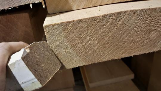 Pine for Windows