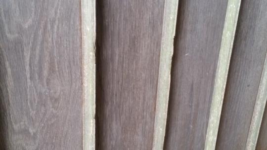 Silvered Oak Boards