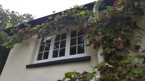 Single Glazed Windows Devon