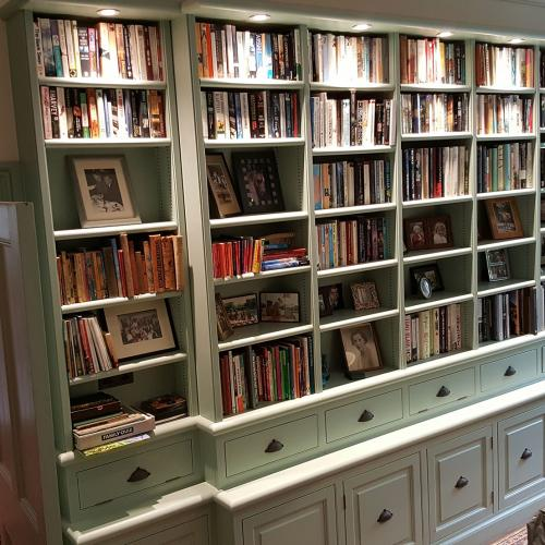 Bespoke Bookcase Devon